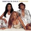 Destiny's Child - Taio Cruz - Djane Housekat - Survior (DJ VIK mash-up)