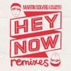 Martin Solveig & The Cataracs - Hey Now! (DVNY Remix) (Feat Kyle)