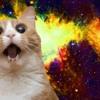 Meow Mix (Multi Genre Mini Mix)