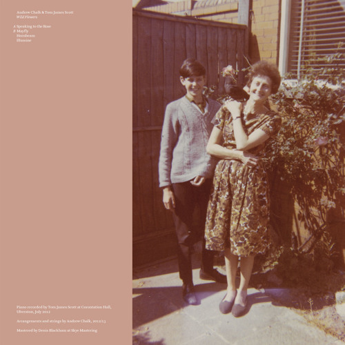 Andrew Chalk & Tom James Scott - Wild Flowers (Album Preview)
