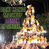 DAHI HANDI MASHUP REMIX 2013 BY DJ SHREE KYN