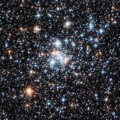 Starlight - Dihedral 2013