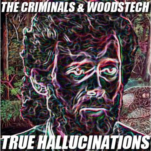 The Criminals & Woodstech - True Hallucinations