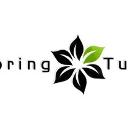 Stephen J. Kross  Dag Licht   Monojoke Remix   Spring Tube   2013