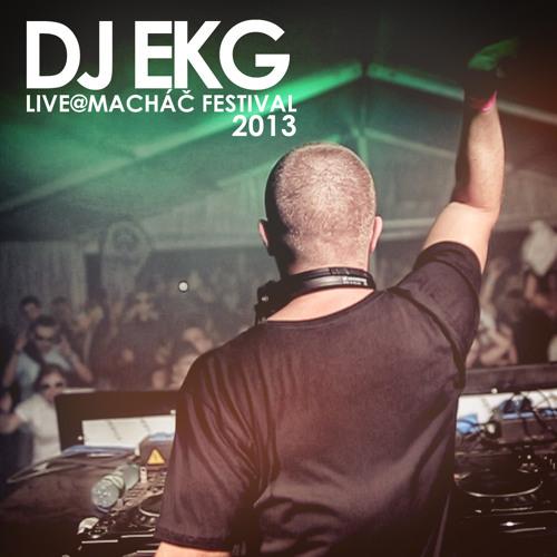 DJ EKG live @ Machac Festival 2013