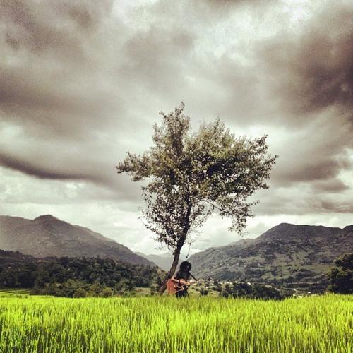 Bistarai - Rohit John Chettri