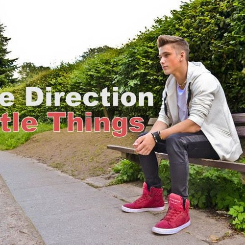 Little Things - One Direction - Dominik Klein Cover