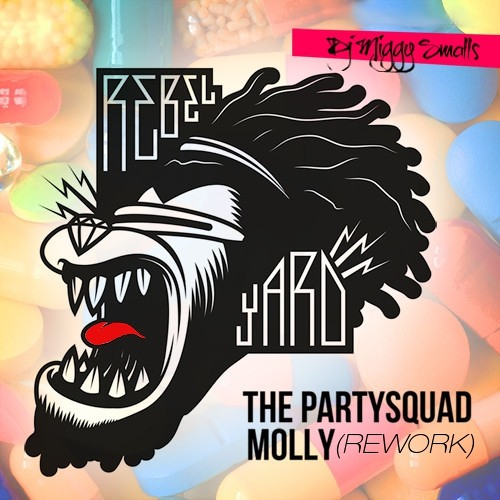 The Partysquad-Molly (Dj Miggy Smalls Re-Work)