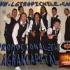 BANDA TROPIKAL DE VALLENAR 2013LA GRAN CAPITAL INSPIRADOTELESERIE TVNLOS CARMONAS PROFECIA (RECORDS) Portada del disco