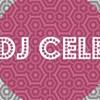 Alacranes Musical | Alerta Zero | Novillos Musical |: Pasito Duranguense Mix II: DJ Cele