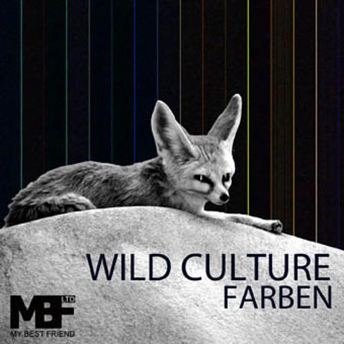 Wild Culture - Farben (Philipp Straub Remix)