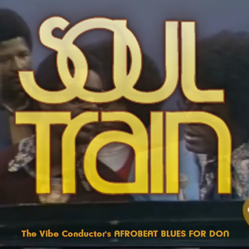 Stevie Wonder - Afrobeat Blues for Don (Soul Train)