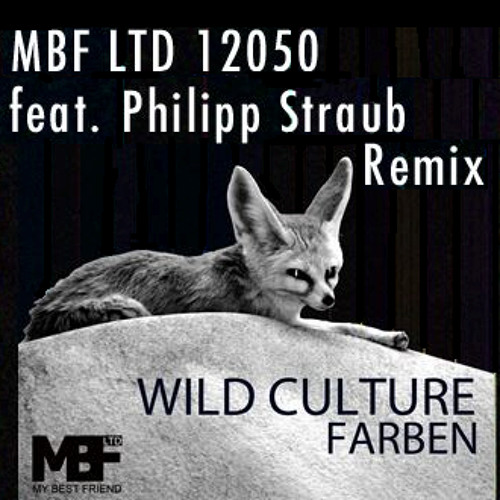 Wild Culture - Farben (Philipp Straub Remix) - MBF Ltd.