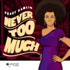 Tracy Hamlin - Never Too Much (Soulfuledge Remix)