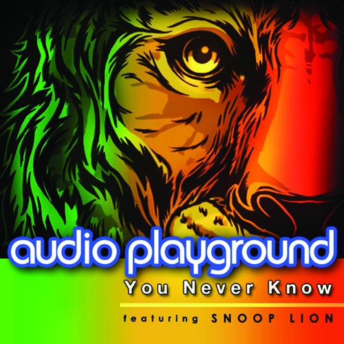 Audio Playground ft Snoop Lion - You Never Know (David May Remix Radio Edit)