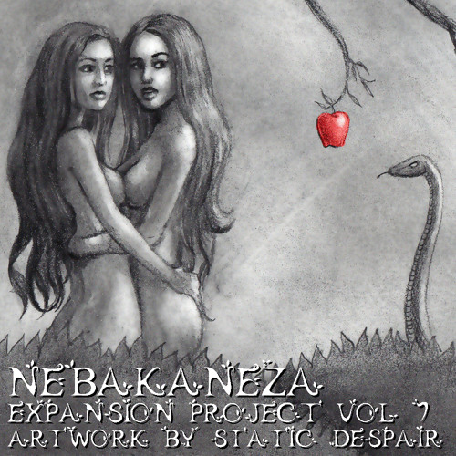 Expansion Project Vol. 7 (2Step/Garage/Brokenbeat/Breaks)