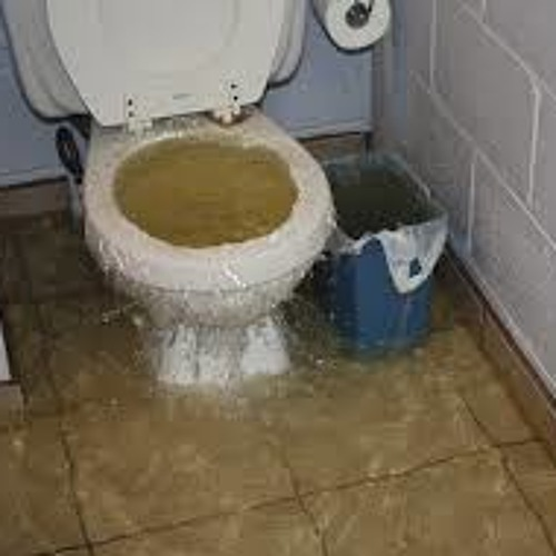 Toilet Water Rising