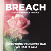 Breach ft. Andreya Triana - Everything You Never Had (We Had It All) [Edited Version]