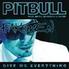 "Pitbull ft. Ne-Yo, Nayer, Afrojack ""Give me everything"" - Fakemen version"