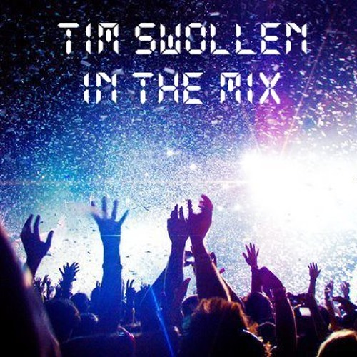 Tim Swollen in the Mix 2013