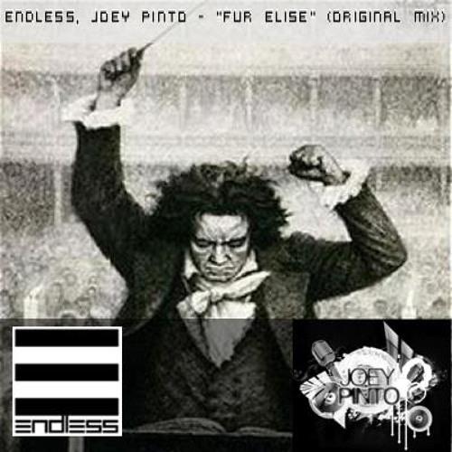 Joey Pinto, Endless - Fur Elise (Original Mix)