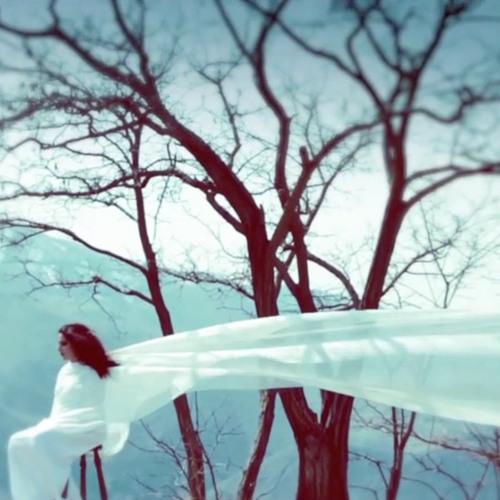 Sara Naeini - Bayad Del Sepord | سارا نائینی - باید دل سپرد