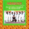 LOS MARAVILLOSOS - al ritmo de los maravillosos Portada del disco