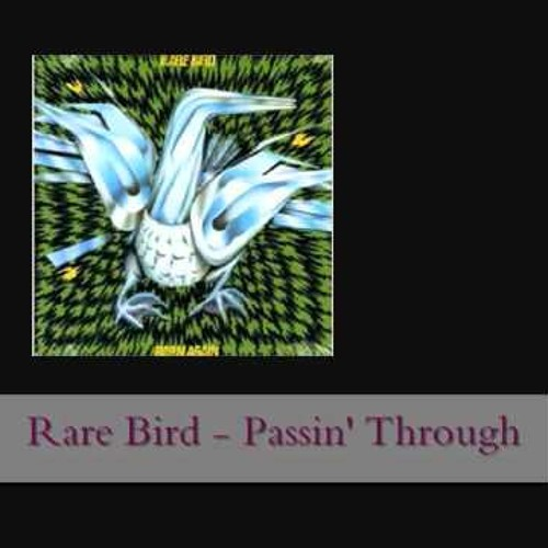 Rare Bird -Passing Through (Gogunedit)