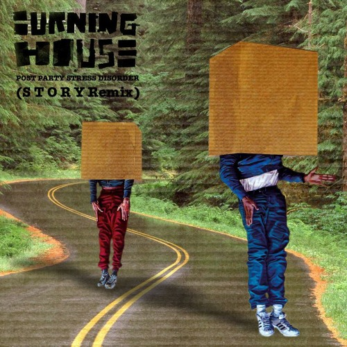 Burning House - Post Party Stress Disorder (S T O R Y Remix)