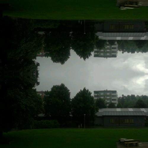 Rain at Kristineberg