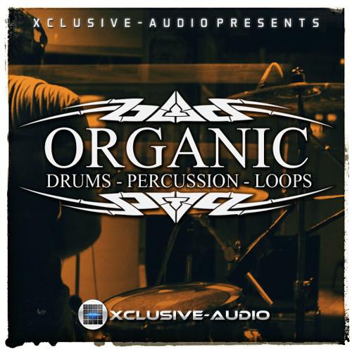 Organic Drum Kit - Drum Loop 7 (Link in Description)