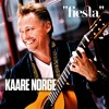 Kaare Norge Plays Fool on the Hill ( The Beatles )