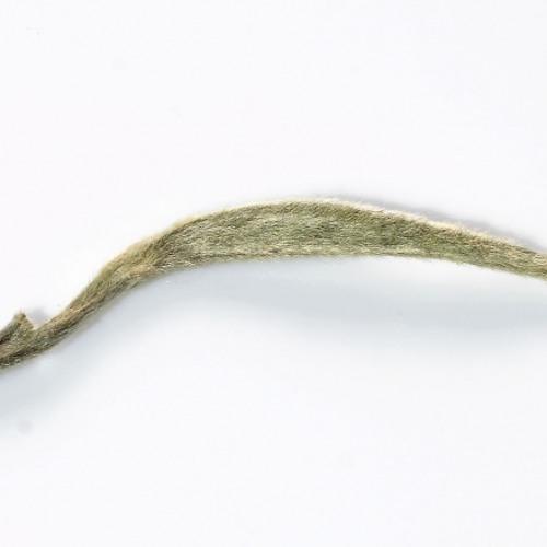 Pimmon-Silver Needle