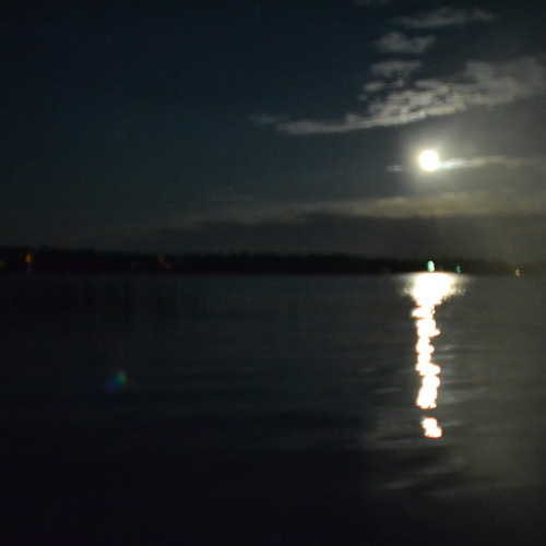 Those Long Nightsss