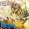Tigres Mix Solo Para Adoloridos Nelson DJ Portada del disco