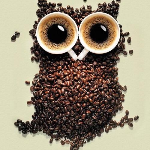 Mornin' Café [339]