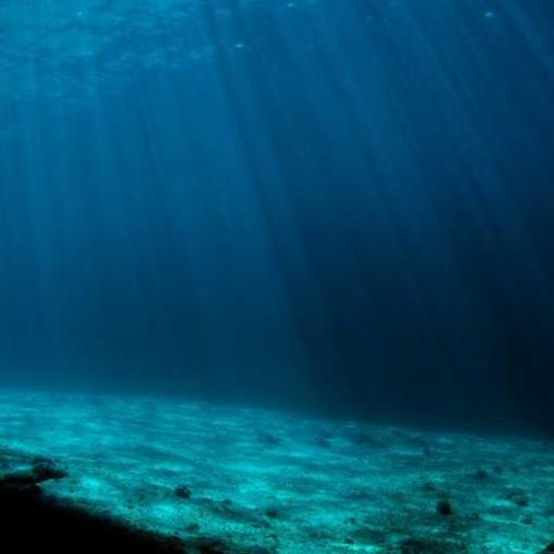 Mermaids, beneath the oceans.