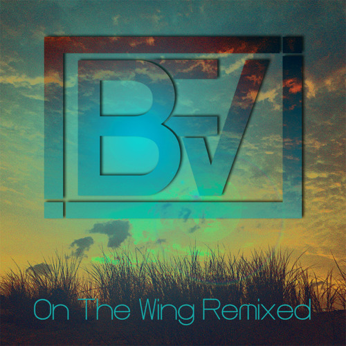 On The Wing (Back From Void Remix) (v2)