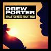 Drew Porter - What You Need Right Now (Bassmonkeys Club Mix)