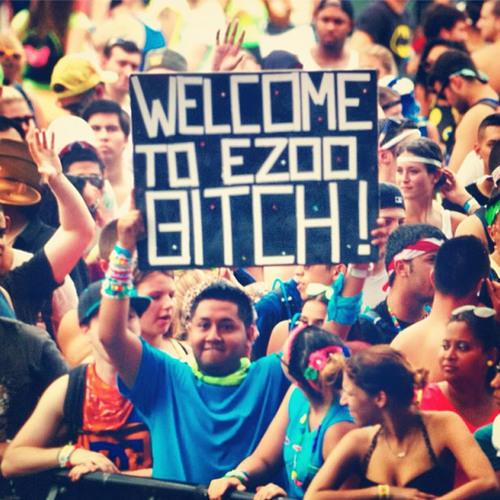 ALVARO - Live @ Electric Zoo 2013 (NYC) *FREE DOWNLOAD*