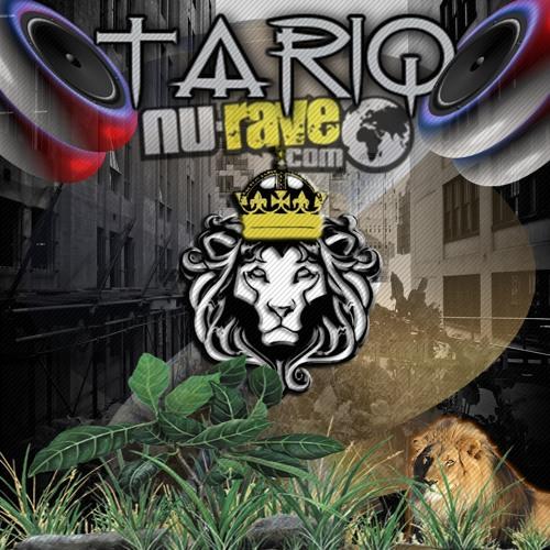 TCD Mix Series Vol 4-Tariq Ziyad