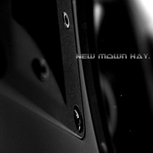 """""""II Sacremental"""" (Radio Edit) by New Mown Hay"""