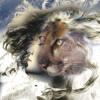 DJ4Kat - Goddess Riddim [Dancehall Instrumental]