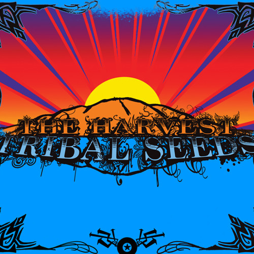 Libertad (feat. Dready) by Tribal Seeds - Listen to music