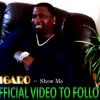 FIGARO - Show Me ~ New Reggae Music 2013
