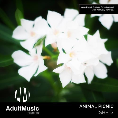 Animal Picnic - She Is (Patrick Podage Remix) [ Adult Music ] OUT NOW