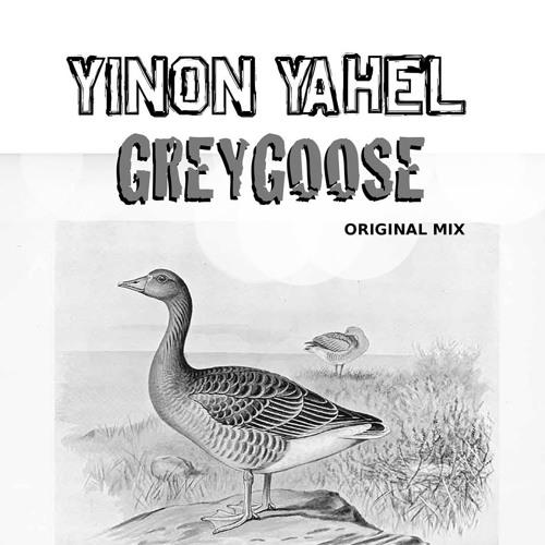 Yinon Yahel - Oh Grey Goose (Dirty Laundry Mashup)