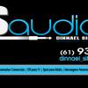 STUDIO DS AUDIO PRODU��ES