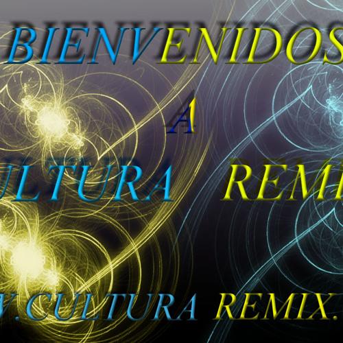 RemixN° 2013