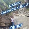 Namiq Qaracuxurlu Olmur